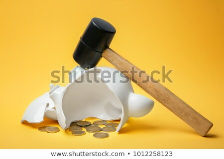 Smashed piggy bank with euros and hammer Stock photo © IS2