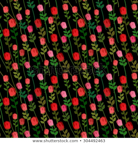 red roses on a black background seamless pattern vector onament stock photo © popaukropa