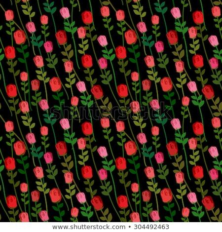 красные розы черный вектора красивой цветы Сток-фото © popaukropa
