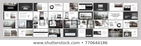 Startup infographic poster template Stock photo © orson