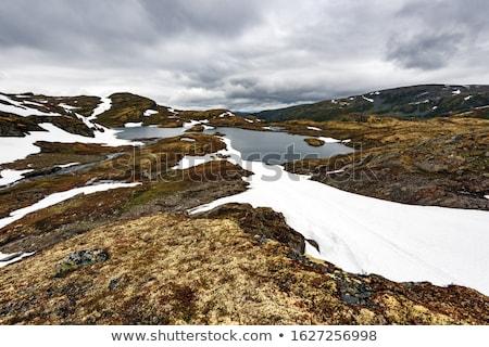 道路 · 山 · 白 · 雪 · 木材 · 氷 - ストックフォト © kotenko