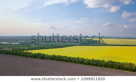 Stock photo: Panoramic view of a field and a village in the distance against a blue sky. Photo from the drone