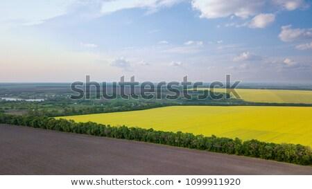 パノラマ 表示 フィールド 村 距離 青空 ストックフォト © artjazz