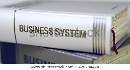 Business - Book Title. Business System. Stock photo © tashatuvango