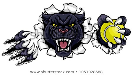 black panther holding tennis ball mascot stock photo © krisdog