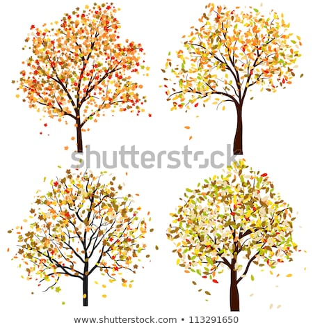 抽象的な 薄緑 秋 ツリー ベクトル 芸術 ストックフォト © svvell