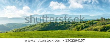 ストックフォト: 夏 · 山 · 表示 · 村 · 空 · ツリー