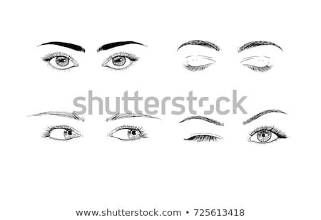 Eyelashes set. Woman beauty Closed eyes. False lashes collection. vector stock photo © Andrei_