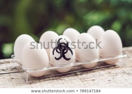 sign of bio hazard on the egg the concept of disease avian influenza salmanese stock photo © galitskaya