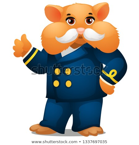 Hamster in the costume of the captain of the ship isolated on white background. Vector cartoon close stock photo © Lady-Luck