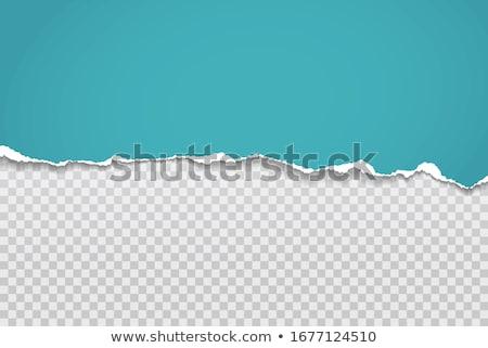 Horizontal torn paper edge. Ripped squared horizontal white paper strips. Vector illustration Stock photo © olehsvetiukha