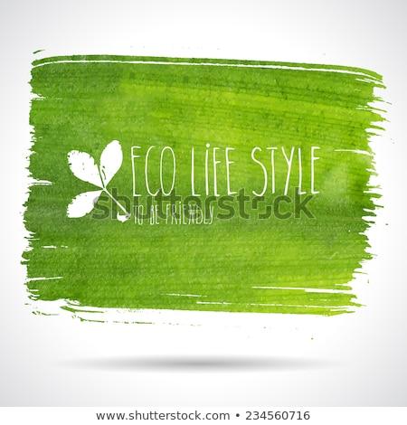 eco banner green leaves white header stock photo © limbi007