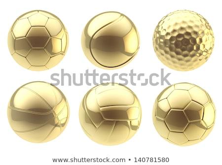 Sports Reward, Gold Basketball Ball Prize Trophy Stock photo © robuart