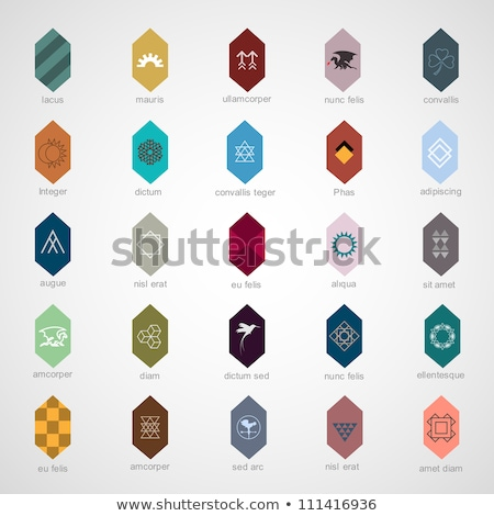 various colorful abstract icons set 1 stock photo © cidepix