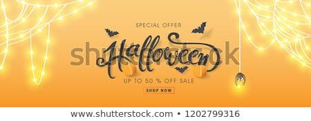 Naranja halloween banner calabaza arana hierba Foto stock © SArts
