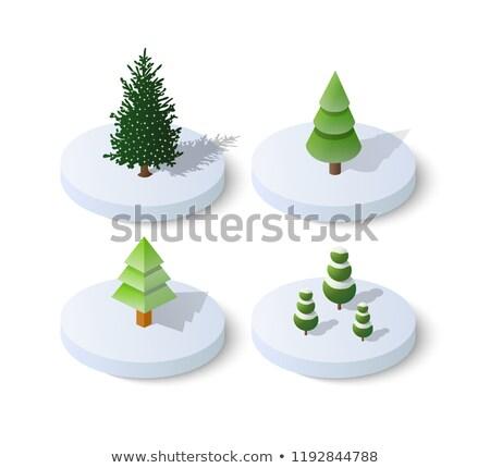 Сток-фото: Green Christmas Tree Isometric Object