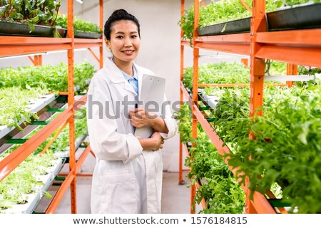 Young successful female researcher or agronomist in whitecoat standing in aisle Stock photo © pressmaster