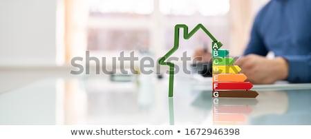 Férfi energia hatékony ház számla diagram Stock fotó © AndreyPopov