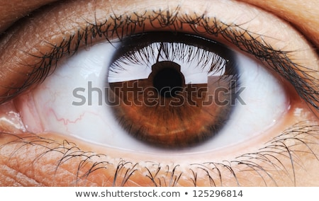 Closeup of human eye, macro mode Stock photo © zurijeta