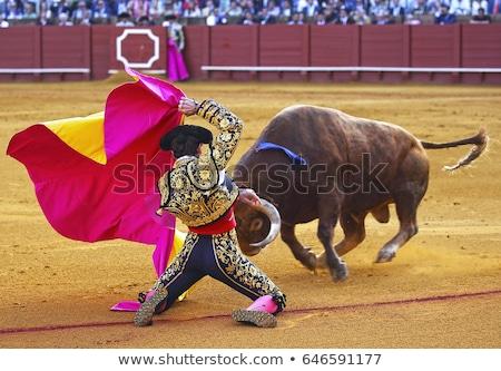 bull fighting stock photo © leeser