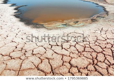 Terra seca efeito aquecimento global mudança climática natureza Foto stock © REDPIXEL