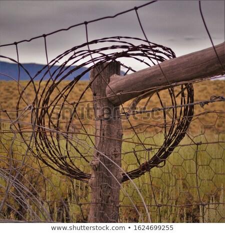 fotó · öreg · rozsdás · szögesdrót · égbolt · absztrakt - stock fotó © devon