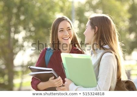 Foto stock: Dois · estudantes · universidade · classe · computador · menina