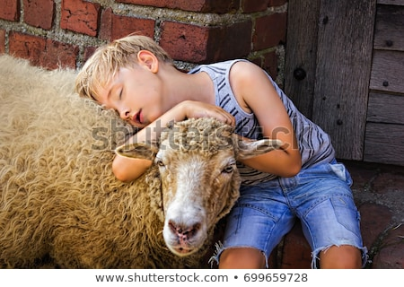 portrait of boy holding sheep in lap stock photo © zzve