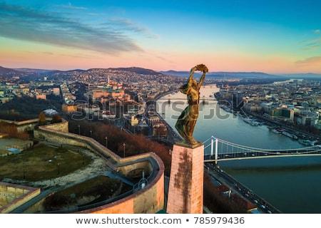 Liberdade estátua Budapeste Hungria libertação colina Foto stock © samsem