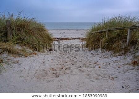 Mar báltico praia 19 paisagem oceano azul Foto stock © LianeM