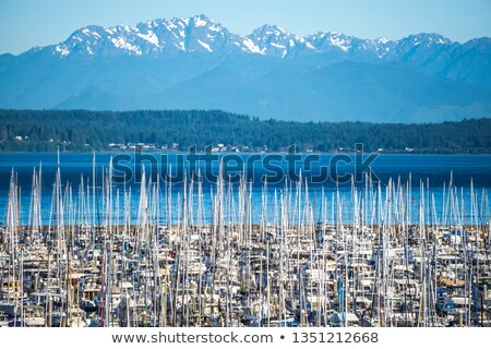 Seattle Bainbridge Island Ferry Puget Sound Olympic Snow Mountai Stock photo © billperry