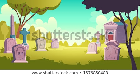 Halloween caixão gramado cartas preto férias Foto stock © 3523studio