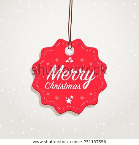 Navidad insignias establecer vintage retro tarjeta Foto stock © mikemcd