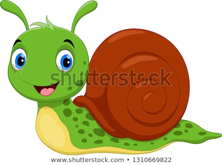 Snail Cartoon Stock photo © fizzgig