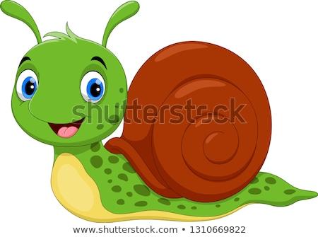 pequeno · caracol · desenho · animado · ilustração · vetor - foto stock © fizzgig