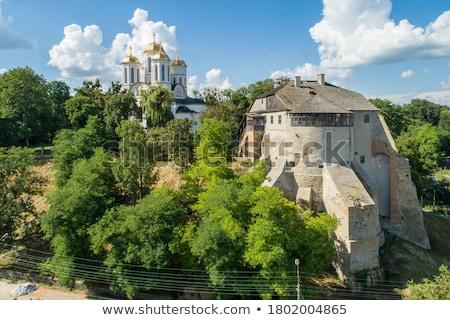 castle in ukraine stock photo © tanyalomakivska