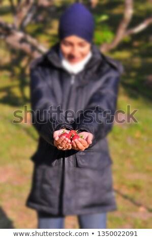 женщину · клубника · профиль · изолированный - Сток-фото © chesterf