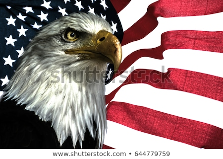Stockfoto: Us Flag With Bald Eagle Head