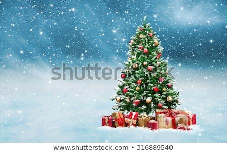 Vreedzaam winterlandschap sneeuwval kerstboom vierkante Rood Stockfoto © wenani