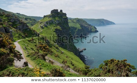 Devon coastline in summer stock photo © andrewroland