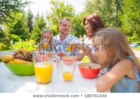 Família alimentação juntos ao ar livre verão parque Foto stock © HASLOO