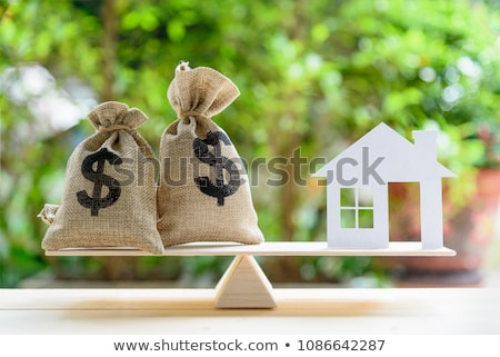 Home Equity Stock photo © elvinstar
