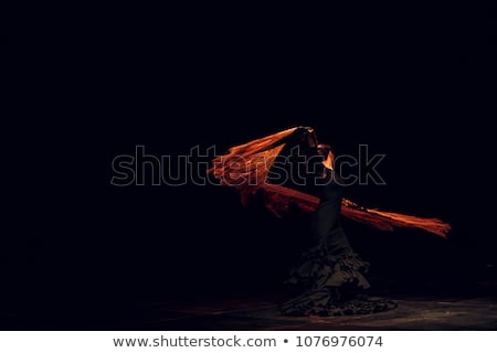 cigány · flamenco · táncos · Spanyolország · lány · piros · rózsa - stock fotó © nejron