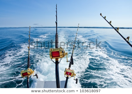 Stock photo: big game fishing reel in natural setting
