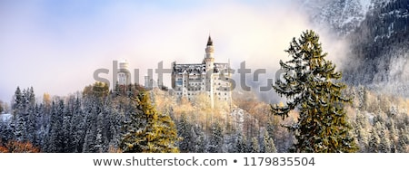 view to the castle on winter day stock photo © nejron