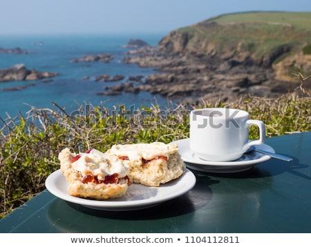 Lagarto punto punta tierra Inglaterra cornualles Foto stock © chris2766