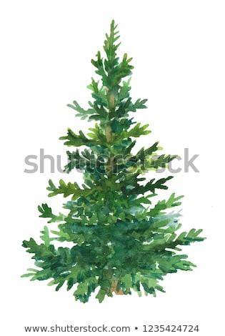 Noel · top · noel · ağacı · süslemeleri · vektör · mavi - stok fotoğraf © neirfy