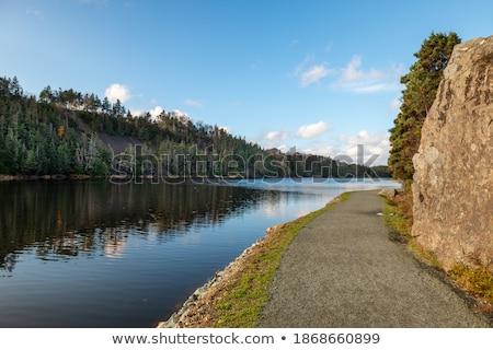 rocha · coberto · caminho · trilha · lado · montanha - foto stock © chrisga