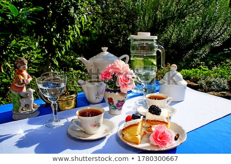 Teatime outdoors. Stock photo © Fisher