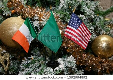 USA and Ireland - Miniature Flags. Stock photo © tashatuvango